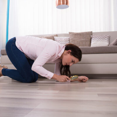 Tipps für den Hausfrieden: anspruchsvolle Mieter*innen