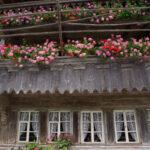 Denkmalpflege in der Schweiz